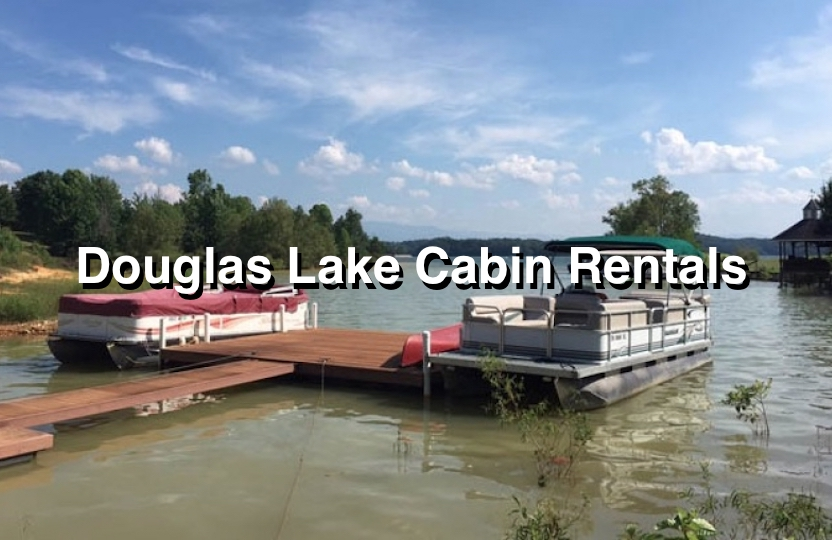 Douglas Lake Cabins