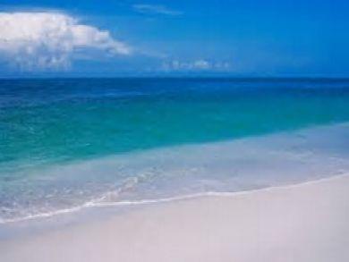 Sandy Beach at Longboat Key