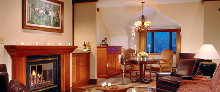 Designer Mountain Style Living Room