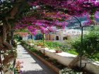 Pathway to Positano Rental