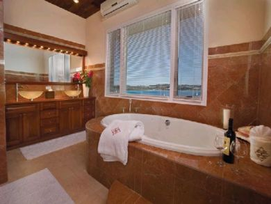Master bathroom with jacuzzi tub & walk-in shower