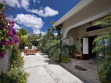 Lush tropical landscape surrounding the patio