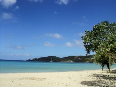 Apartment  for rent just a couple minutes' walk to one of the most beautiful Caribbean beaches