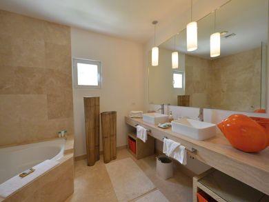 Master bathroom with tub & walk-in shower