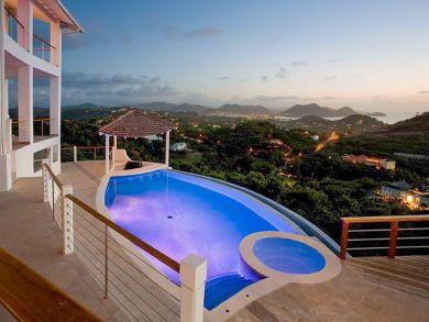 Pool & hot tub with tiki hut