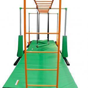 Monkey Bar with Ladder