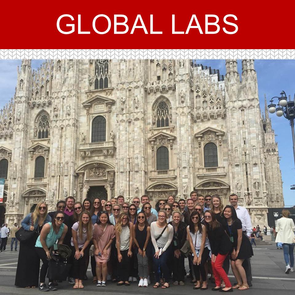 Learn More About Global Labs