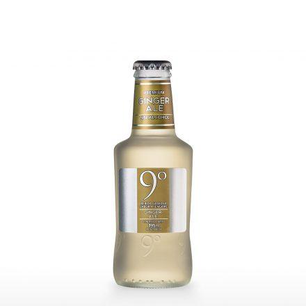 Soda 9 Grados Ginger Ale de 200ml