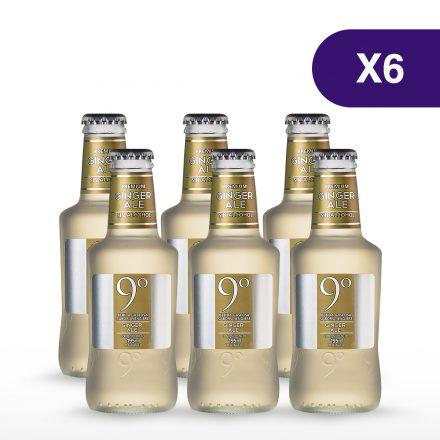Soda 9 Grados Ginger Ale - 6 unidades de 200ml
