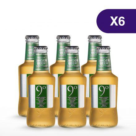 Soda 9° Grados Ginger Beer - 6 unidades de 200ml