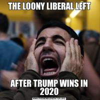 THE LOONY LIBERAL LEFTAFTER TRUMP WINS IN 2020