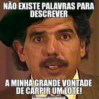 NÃO EXISTE PALAVRAS PARA DESCREVERA MINHA GRANDE VONTADE DE CARPIR UM LOTE!
