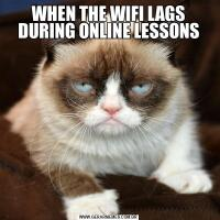 WHEN THE WIFI LAGS DURING ONLINE LESSONS