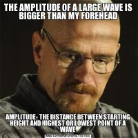 THE AMPLITUDE OF A LARGE WAVE IS BIGGER THAN MY FOREHEADAMPLITUDE- THE DISTANCE BETWEEN STARTING HEIGHT AND HIGHEST OR LOWEST POINT OF A WAVE