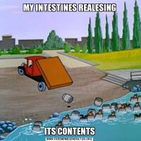 MY INTESTINES REALESINGITS CONTENTS