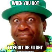WHEN YOU GOTTO FIGHT OR FLIGHT