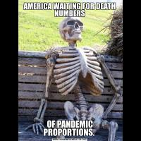 AMERICA WAITING FOR DEATH NUMBERSOF PANDEMIC PROPORTIONS.