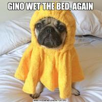 GINO WET THE BED, AGAIN