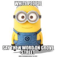 WHITE PEOPLESAY THE N WORD ON GROVE STREET