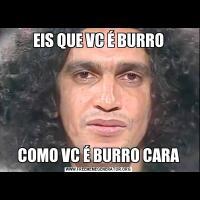 EIS QUE VC É BURROCOMO VC É BURRO CARA