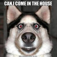 CAN I COME IN THE HOUSE