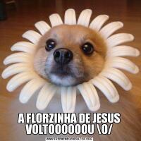 A FLORZINHA DE JESUS VOLTOOOOOOU O/