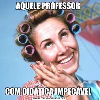 AQUELE PROFESSOR COM DIDÁTICA IMPECÁVEL