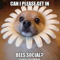 CAN I PLEASE GET INBEES.SOCIAL?