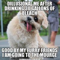 DILLUSIONAL ME AFTER DRINKING 30 GALLONS OF BLEACHGOOD BY MY FURRY FRIENDS I AM GOING TO THE MOURGE