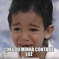 CHEGOU MINHA CONTA DE LUZ