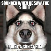 SOUNDER WHEN HE SAW THE SHRIFFPOINT A GUN AT HIM