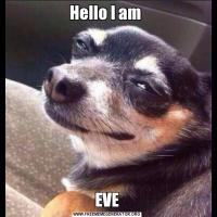Hello I am EVE