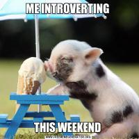 ME INTROVERTING THIS WEEKEND