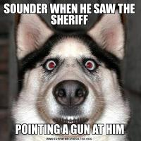SOUNDER WHEN HE SAW THE SHERIFFPOINTING A GUN AT HIM