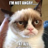 I'M NOT ANGRY.......AT ALL