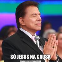 SÓ JESUS NA CAUSA