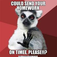 COULD SEND YOUR HOMEWORKON TIMEE, PLEASE!!?