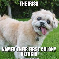 THE IRISHNAMED THEIR FIRST COLONY REFUGIO