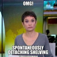 OMG!SPONTANEOUSLY DETACHING SHELVING