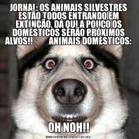 JORNAL: OS ANIMAIS SILVESTRES ESTÃO TODOS ENTRANDO EM EXTINÇÃO, DÁ QUI A POUCO OS DOMÉSTICOS SERÃO PRÓXIMOS ALVOS!!          ANIMAIS DOMÉSTICOS:OH NOH!!