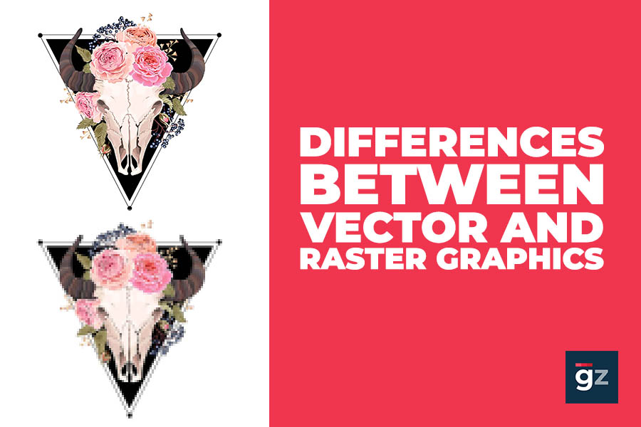 Difference Between Vector and Raster Graphics
