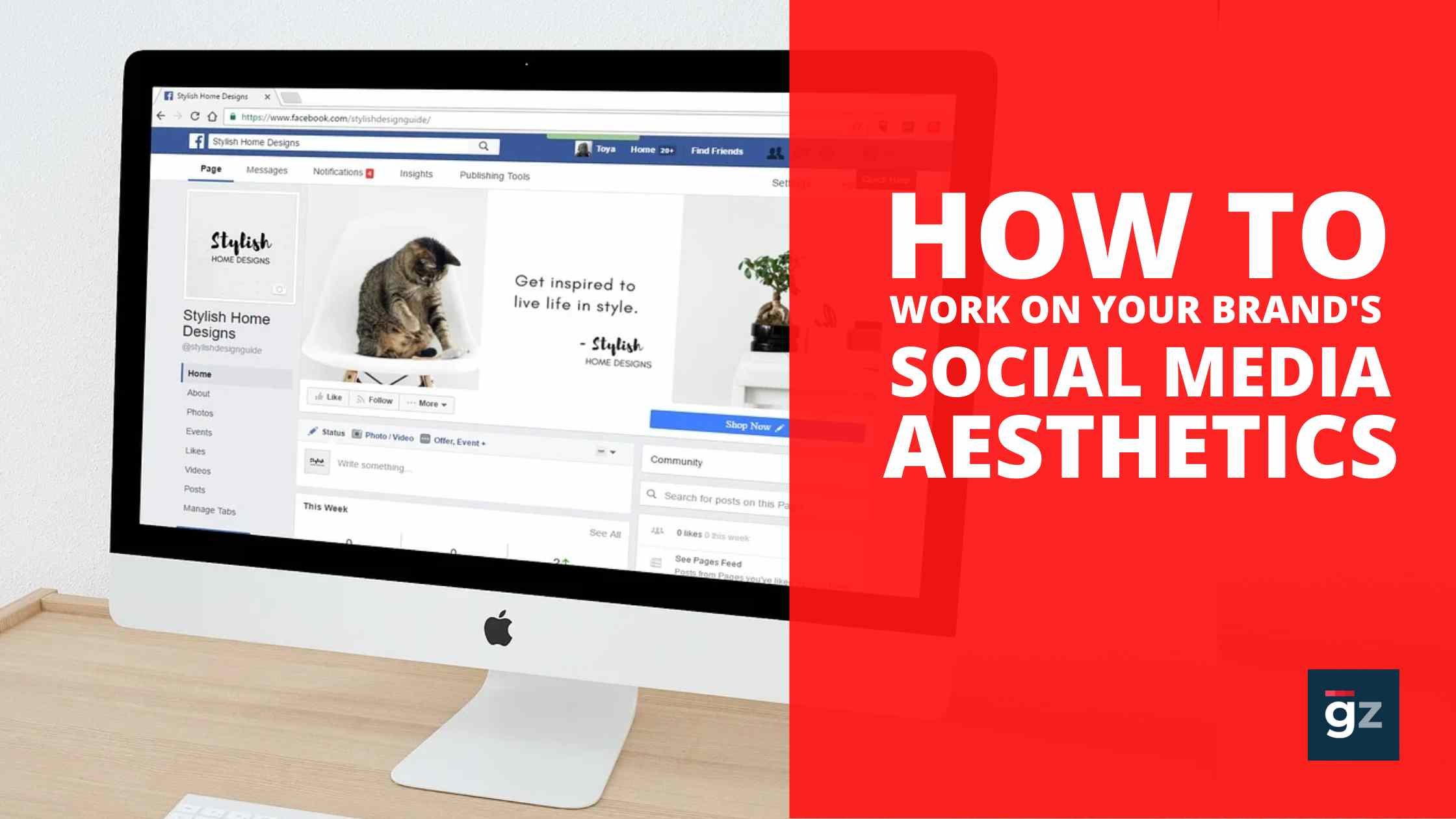 How To Work On Your Brand's Social Media Aesthetics