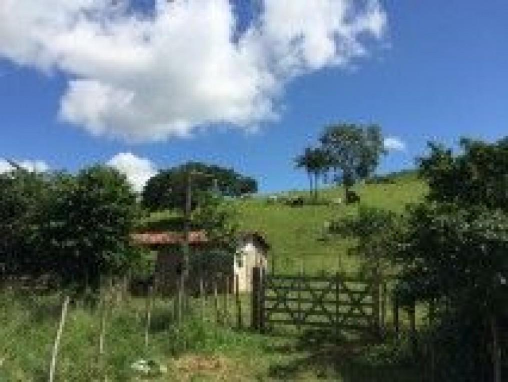 excelente fazenda, toda plantada de capim pangola, boa para criação de gado, etc