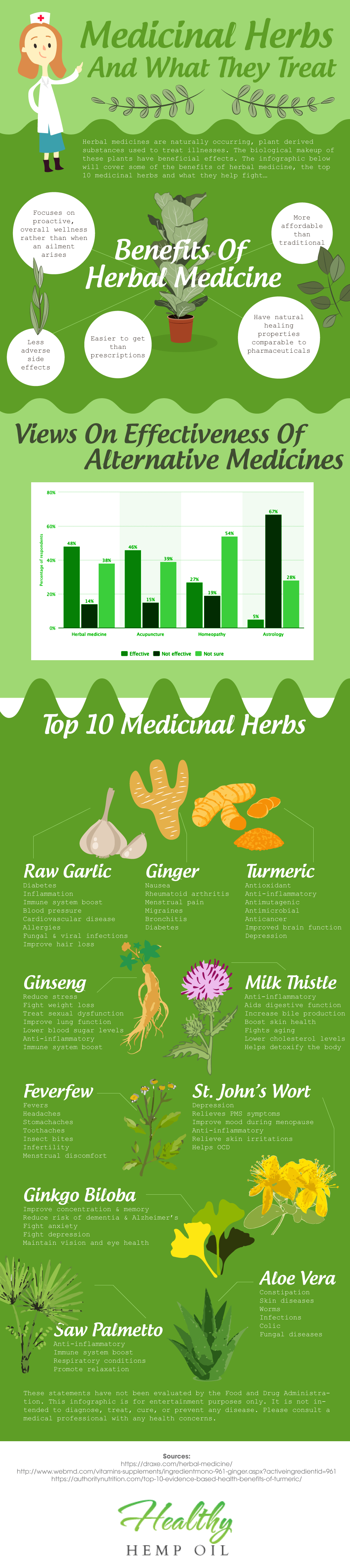 Top 10 Medicinal Herbs... And What They Treat