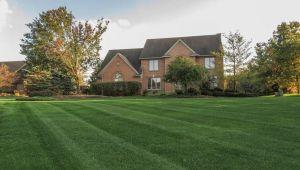 1606 Cedar Lane, Ann Arbor, MI, 48105
