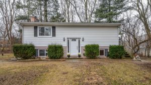 8904 Rushview Drive, Pinckney, MI, 48169
