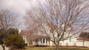 9164 Stoneyfield Court, Dexter, MI, 48130