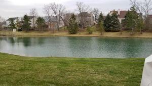 1701 Weatherstone Drive, Ann Arbor, MI, 48108