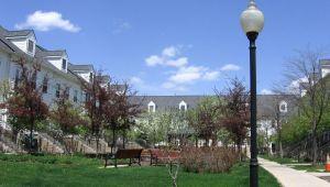 1135 Freesia Court, Ann Arbor, MI, 48105