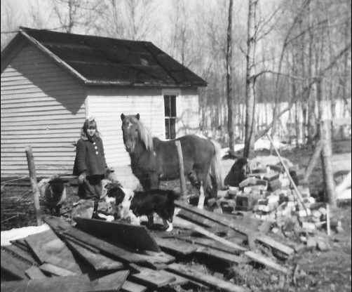 Reflections of a Second-Generation Homesteader